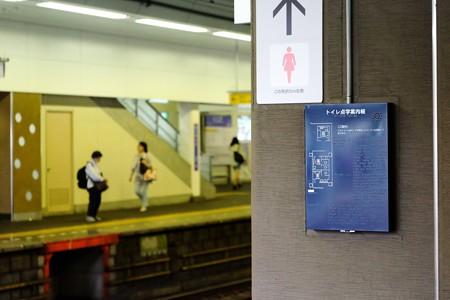 2016.06.14 駅 点字案内板 点字・音声・凸図
