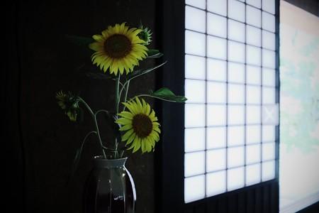 2016.08.08 長屋門公園 古民家 夏の生花