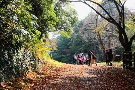2016.11.18 大池公園 校外学習