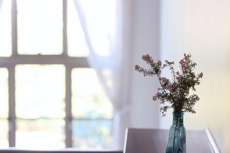 2017.02.17 横浜市イギリス館 ジャノメエリカのある窓景