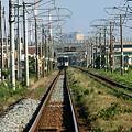 Photos: 2010.08.18 新潟 夏の信越本線