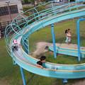 Photos: 公園で
