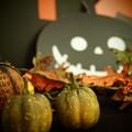 Photos: かぼちゃ~