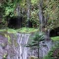 油木美林・不易の滝。