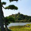 Photos: 秋陽の三渓園 5