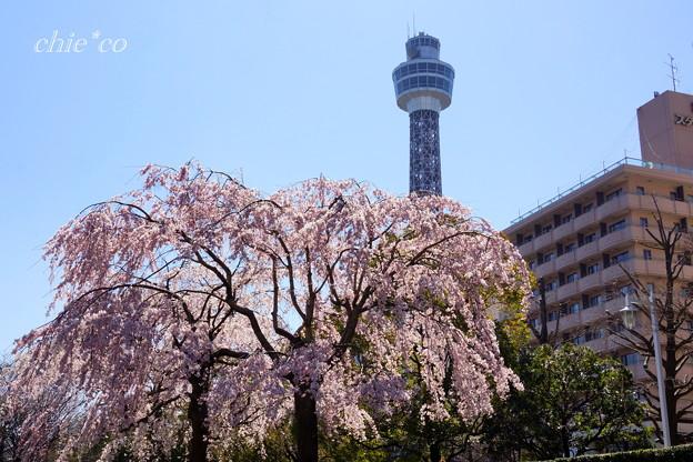 Yokohama-266