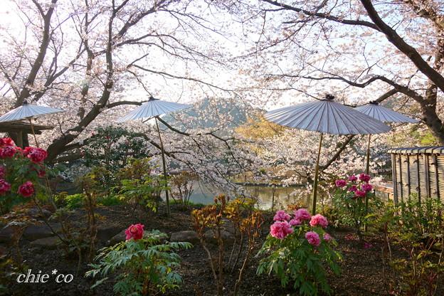 鎌倉-195
