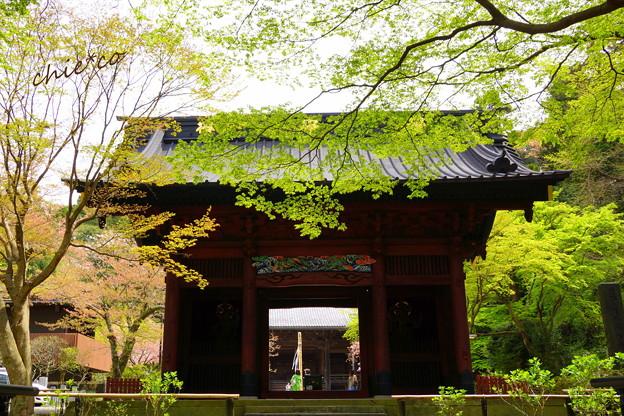 鎌倉-171