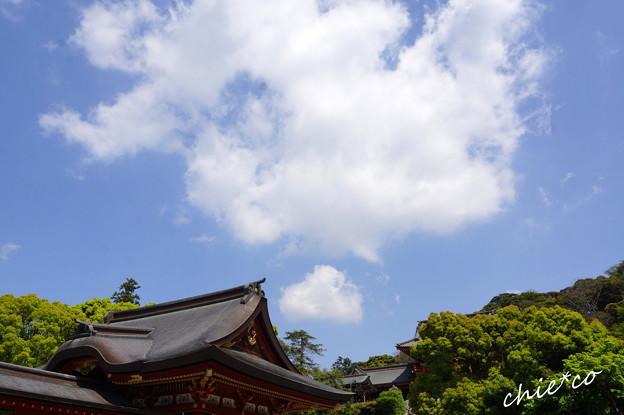 鎌倉-341