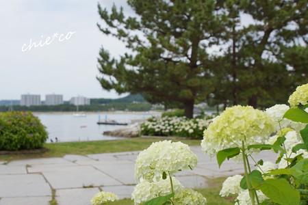 八景島-268