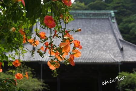 鎌倉-212