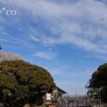 江の島-346