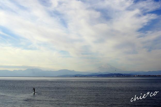 江の島-377