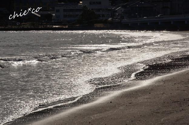 江の島-384