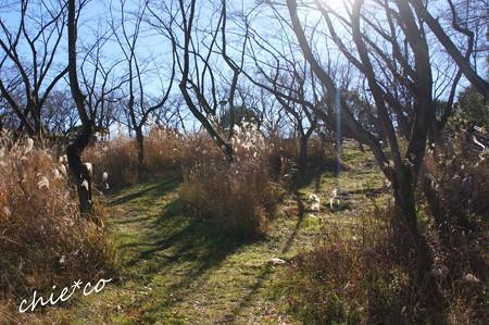 久良岐公園-123
