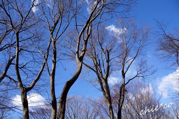 久良岐公園-135