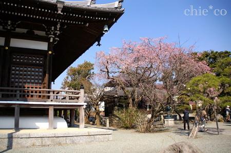 鎌倉-306