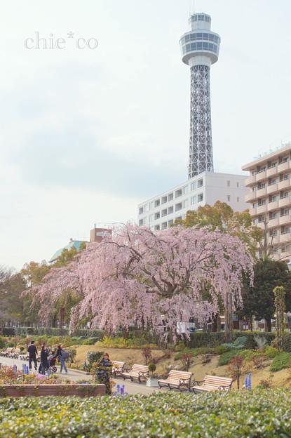 写真: Yokohama-140