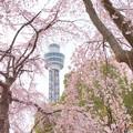 写真: Yokohama-150