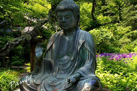 水無月の東慶寺・・1