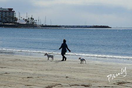 浜辺にて・・