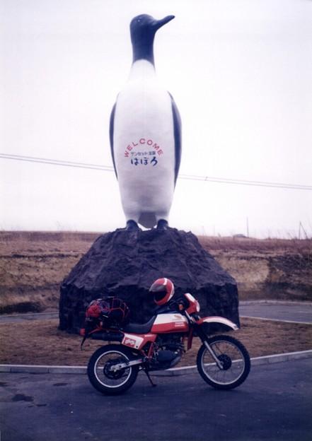 写真: 1990年4月1日XL250日本一周羽幌町