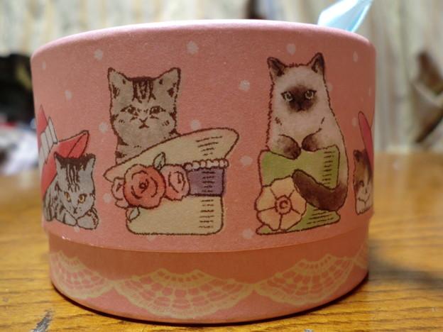 猫チョコ3