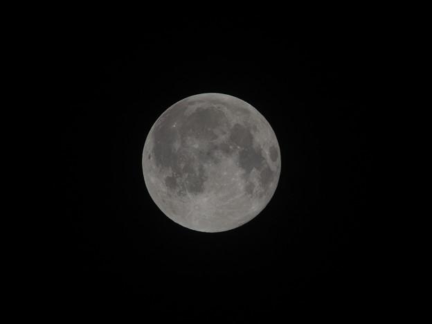 Photos: 8月18日の満月
