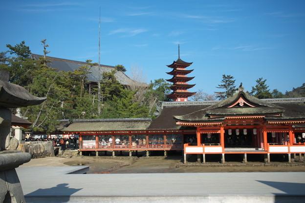 Photos: 厳島