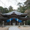 写真: 極楽寺本堂