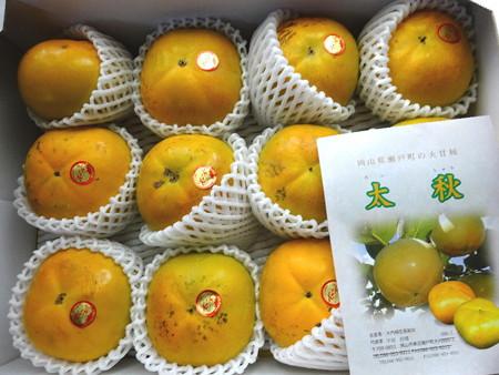 161014太秋柿