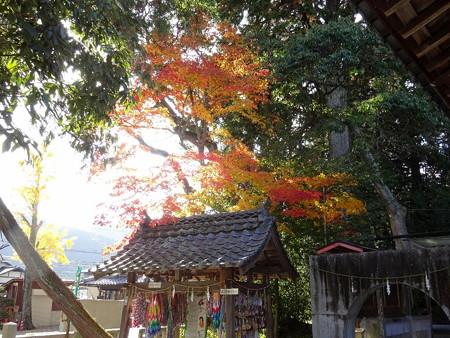 161116-03稗田野神社
