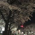Photos: 150405_02