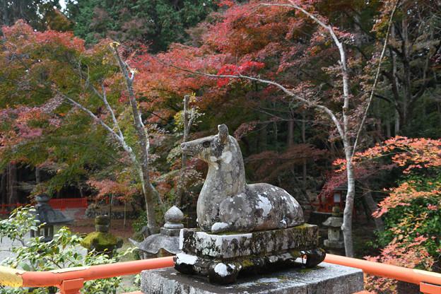 大原野神社の狛鹿(牝鹿)