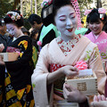 節分会/祇園の舞妓さん