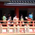 第2回祇園の舞妓さん紹介
