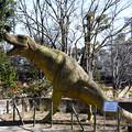 ティラノザウルスも苔むして