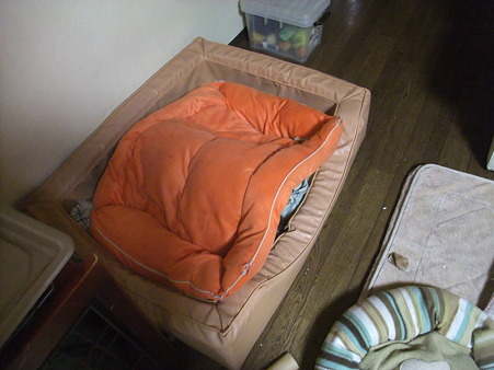 なにやら盛り上がってるベッド