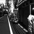 Photos: 夏