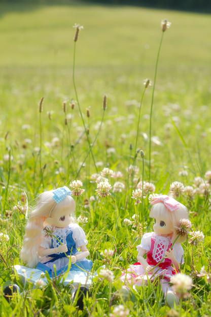 レンゲ畑で