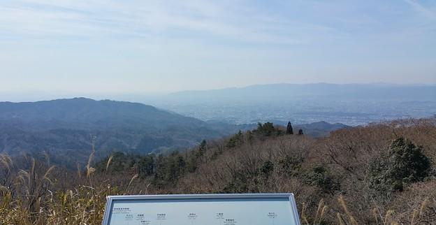 0312比叡山8一本杉3-1