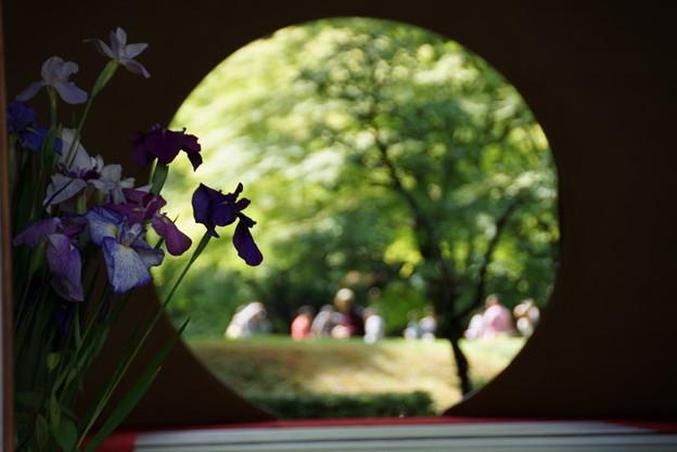 写真: ハナショウブと丸窓!201506
