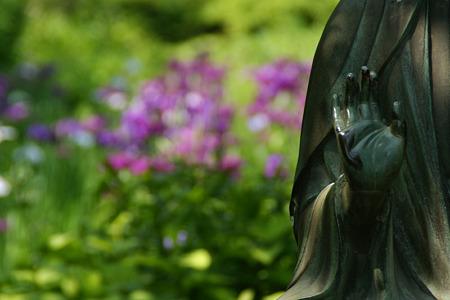 釈迦坐像と花菖蒲園!(100612)