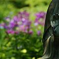 Photos: 釈迦坐像と花菖蒲園!(100612)