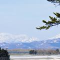 写真: 北国・石狩雪景