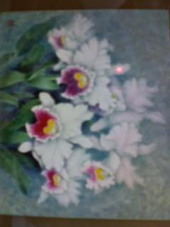 カトレアの絵です。10号。