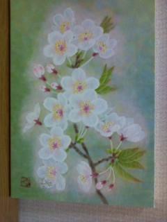 桜の小さな絵です。サムホール。