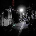 Photos: 夜の路地裏