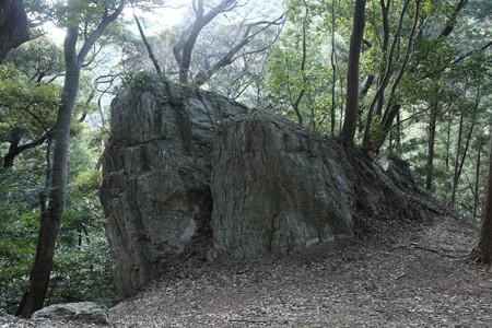 天白磐座遺跡 (1)