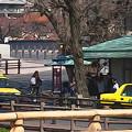 Photos: 後楽園のバス停